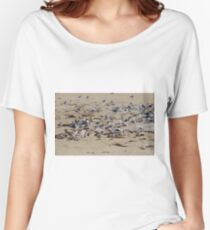 Greater Crested Tern Colony Women's Relaxed Fit T-Shirt