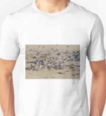 Greater Crested Tern Colony Unisex T-Shirt