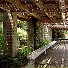 Pergola Inside the Garden Wall by SummerJade