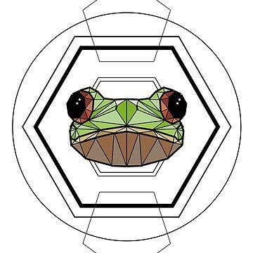 Australian Tree Frog - Colour by ErinJain