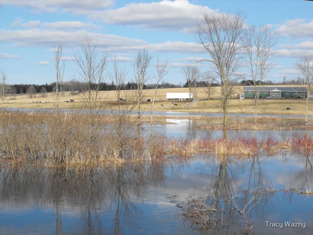 River Floods The Farmlands by Tracy Wazny
