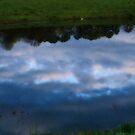 Réfléchissant sur un étang by solareclips~Julie  Alexander