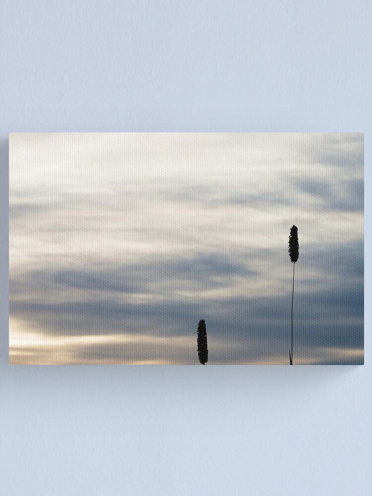 Alternate view of Grasses 5 Canvas Print