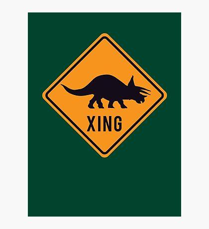 Prehistoric Xing - Triceratops Photographic Print