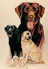 Labrador Family by BarbBarcikKeith
