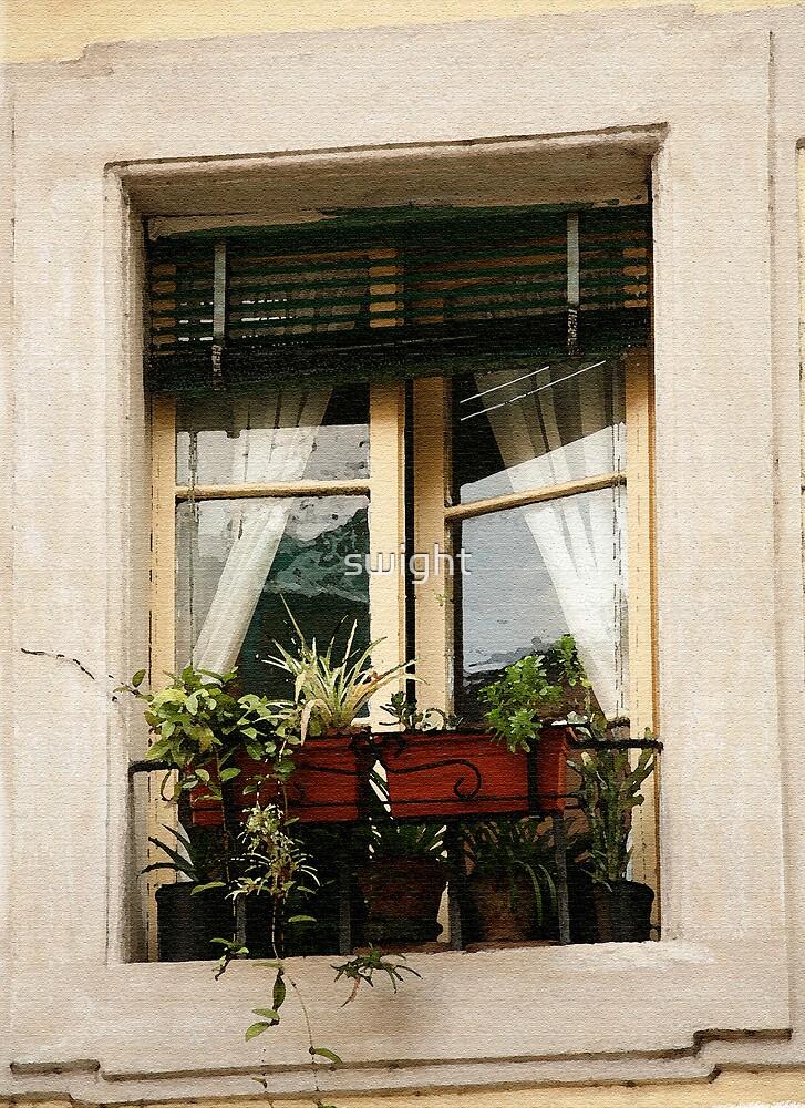 Rome Window by swight