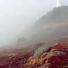 One Foggy Sight by Brian Carey