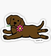 Chocolate Labrador Puppy and Daisy Sticker