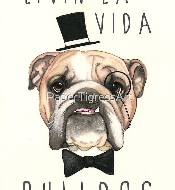 Livin' La Vida Bulldog - English Bulldog by PaperTigressArt