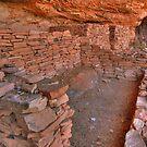 Cliff Ruins by Deborah Lee Soltesz