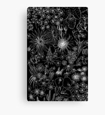 Assortment of Flowers - Inverted Canvas Print