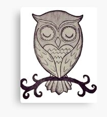 Owls Canvas Print