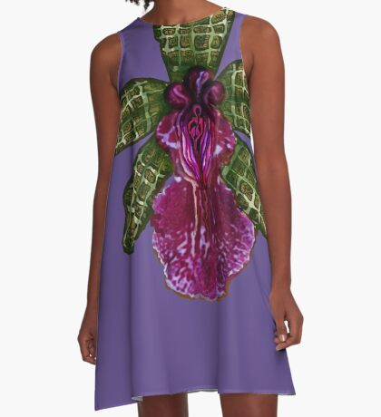 Pinque and Purrple A-Line Dress