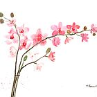 Pink orchids  by Monika Howarth