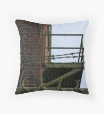 Restrictions Throw Pillow