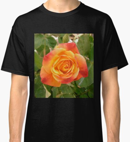 Orange and red rose Classic T-Shirt