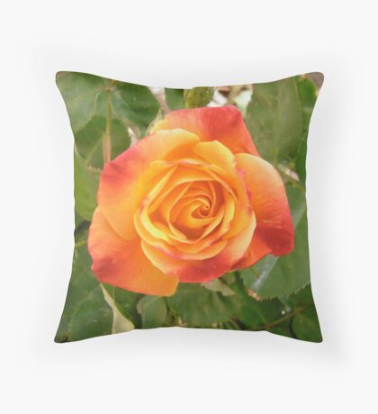 Orange and red rose Throw Pillow