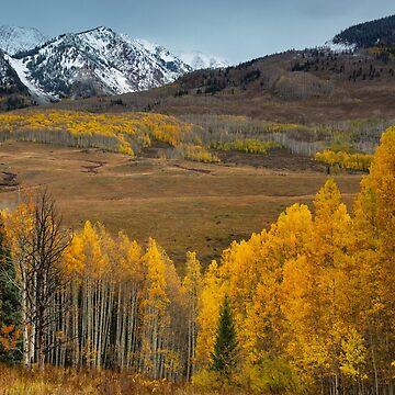 Colorado Autumn by kkart