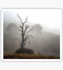 Early Morning Magic - Turondale Turnoff NSW Sticker