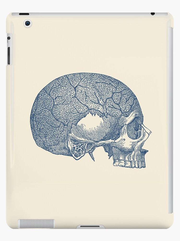 Vinilos y fundas para iPad «Diagrama de vena y cráneo - Anatomía ...