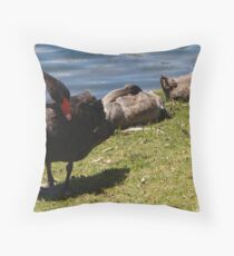 Mother swan and family Throw Pillow