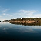 Horton Bay at 6 by toby snelgrove  IPA