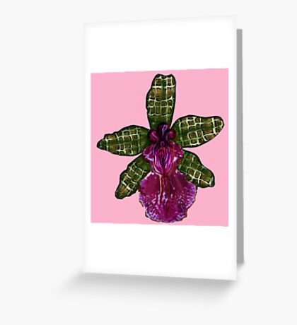 Pinque Purrfection Greeting Card