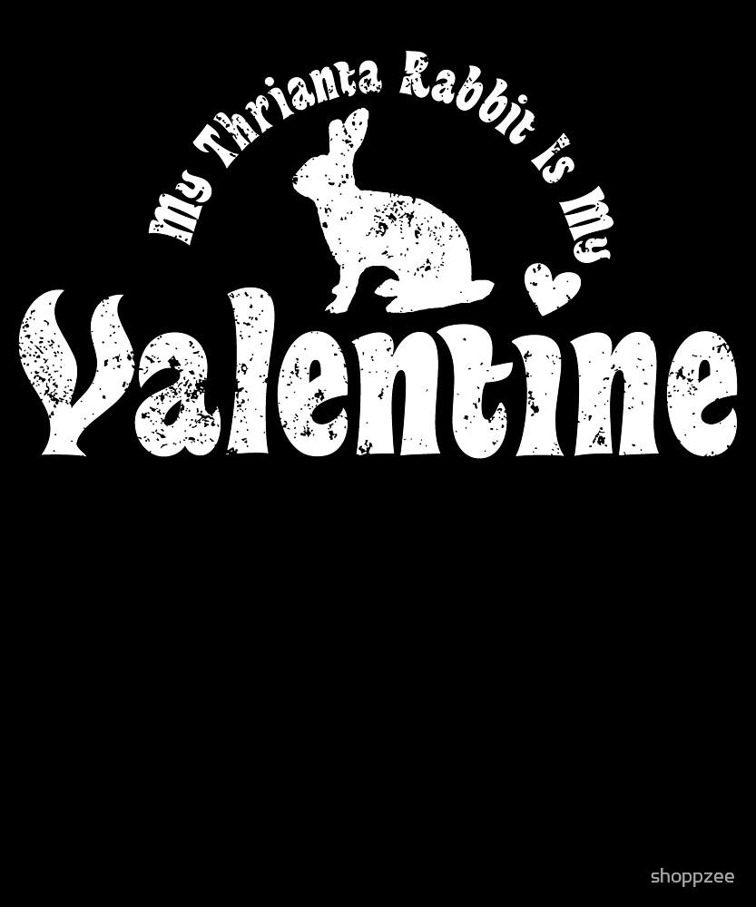 My Anti Valentine Pet Thrianta Rabbit by shoppzee