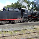 J Class 541 by David Smith