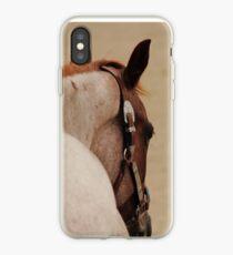 Roan Quarter Horse iPhone Case