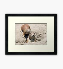 two prairie dogs watching from hole Framed Print