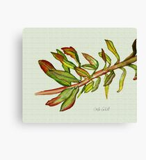 Leafy Stem Canvas Print