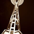 Lone Needle by JustM