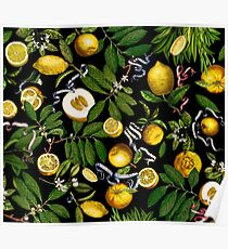Lemon Tree - Black Poster