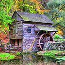 Cuttalossa Saw Mill by DJ Florek