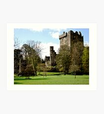 Blarney Castle, Ireland Art Print