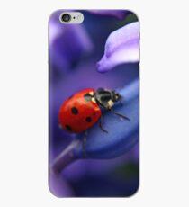 Coccinellidae iPhone Case