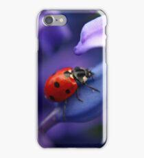 Coccinellidae iPhone Case/Skin