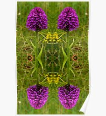 Pyramidal Orchid - iPhone Case Poster