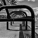 Bench View by John  Kapusta
