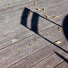 Sun Shadows II by Louise Marlborough