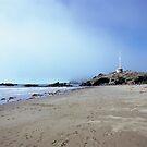 Mist over Sumner beach by Louise Marlborough
