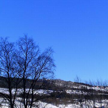Winter View by svehex