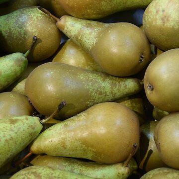 Pears by svehex