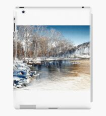 Winter In The Park - Infrared iPad Case/Skin
