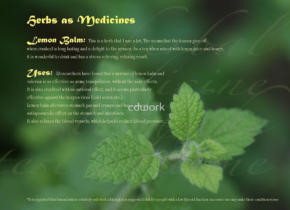 Herbs as Medicine- Lemon Balm by cdwork