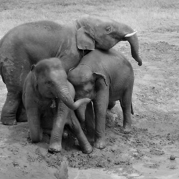 Group hug in B&W by Kyra