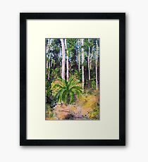 Cycads - outback paradise Framed Print