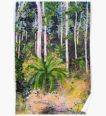 Cycads - outback paradise Poster