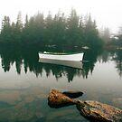 A Shot in the Fog by Brian Carey